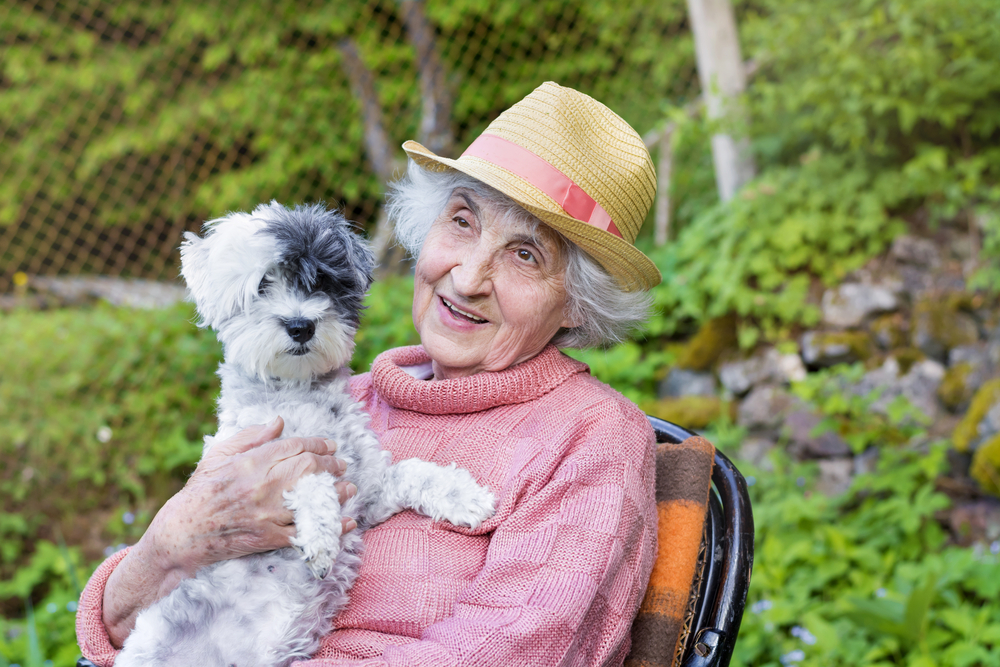 Pets for Senior Citizens, Benefiting elderly and pets!