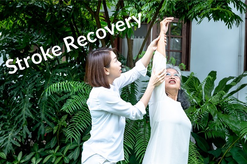 LEARN HOW TO RECOVER FROM A STROKE